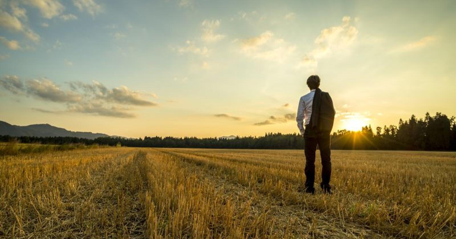 Fôrkrisen landet over har også en menneskelig side. Bondelaget både sentralt og hos fylkeskontorene får nå mange henvendelse rfra fortvilte bønder som frykter for egen psykiske helse. Foto: Shutterstock/Gajus
