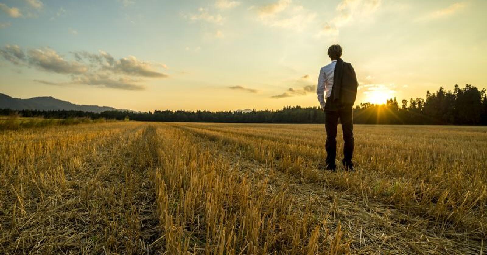 Kun 19 prosent av de spurte svarte at de hadde planer om å pensjonere seg fullt og helt fra gårdsarbeidet. Foto: Shutterstock/Gajus