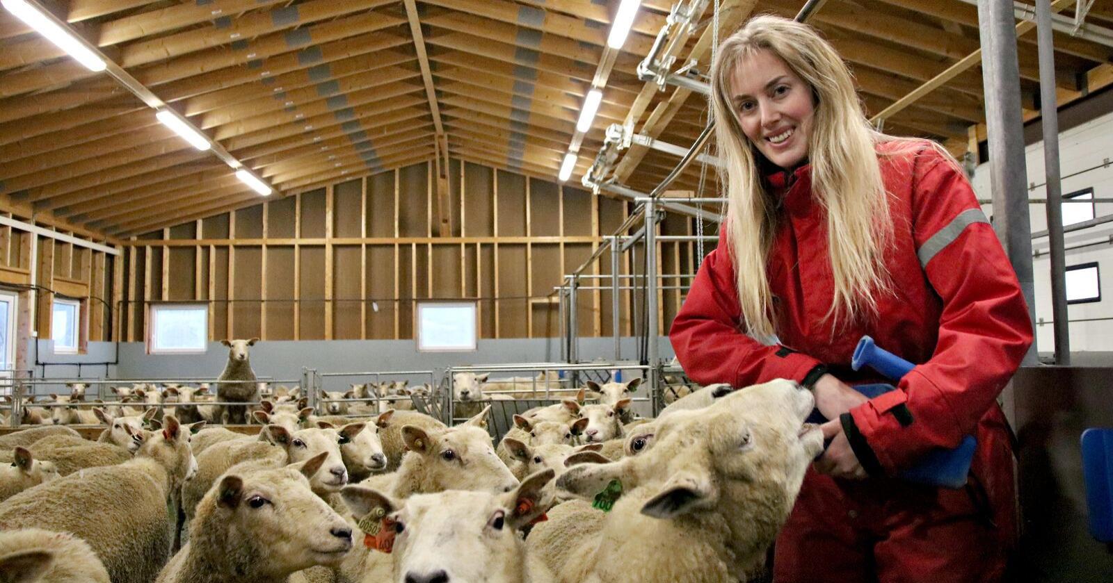 Budsjettet for det nye sauefjøset var på 2 240 000 kroner. Lisa Marthine Utgård forteller at det er plass til 200 vinterforede sauer i nyfjøset. Foto: Knut Houge