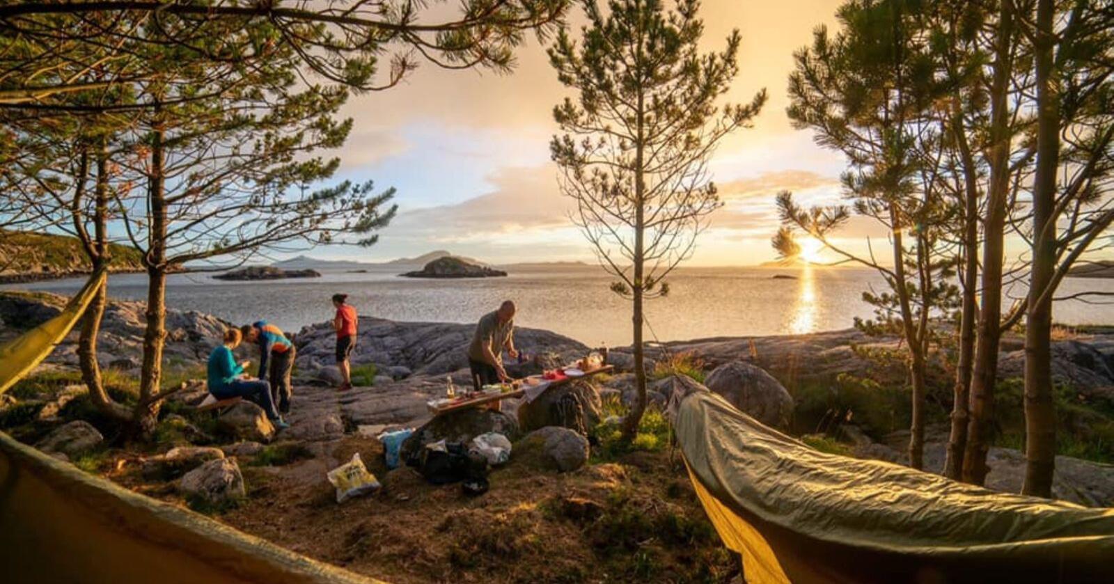 Drømmehøstferie. Salget av hengekøyer har eksplodert under korona. Samtidigferierer stadig flere i norsk natur. Her fra hengekøyeparken Riksgrensen ved havet iMidsund. Foto: Jiri Paur