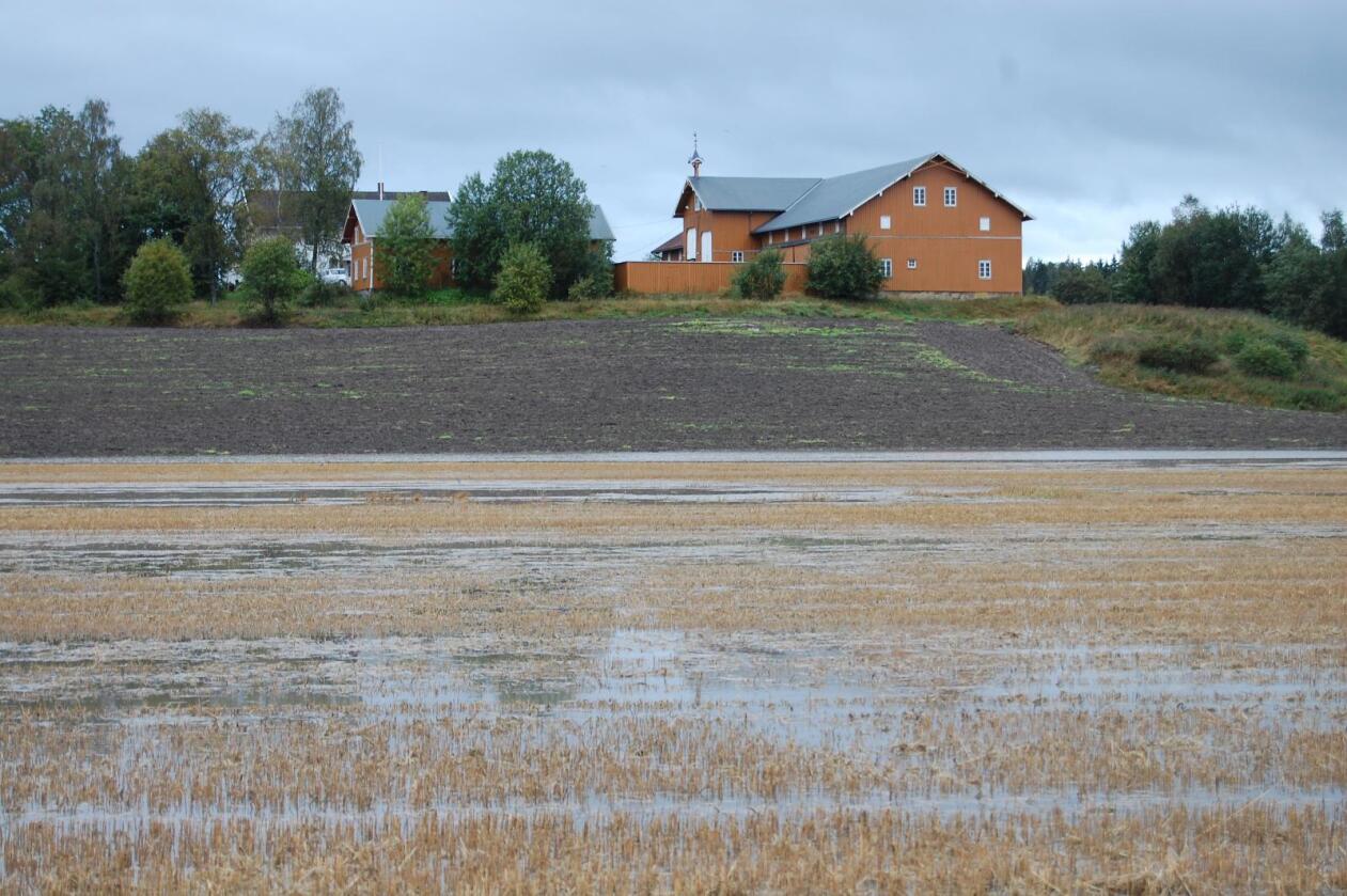 Store klimaendringer: Klima er en av de tunge landbrukstrendene. Norsk klimaservicesenter spår en temperaturøkning på 4,5 prosent, færre dager med snø, mer regn og 60 prosent økning i flomstørrelse i slutten av dette århundret. Her fra en flom på Østlandet høsten 2015. (Foto: Jordvern Oslo og Akershus)