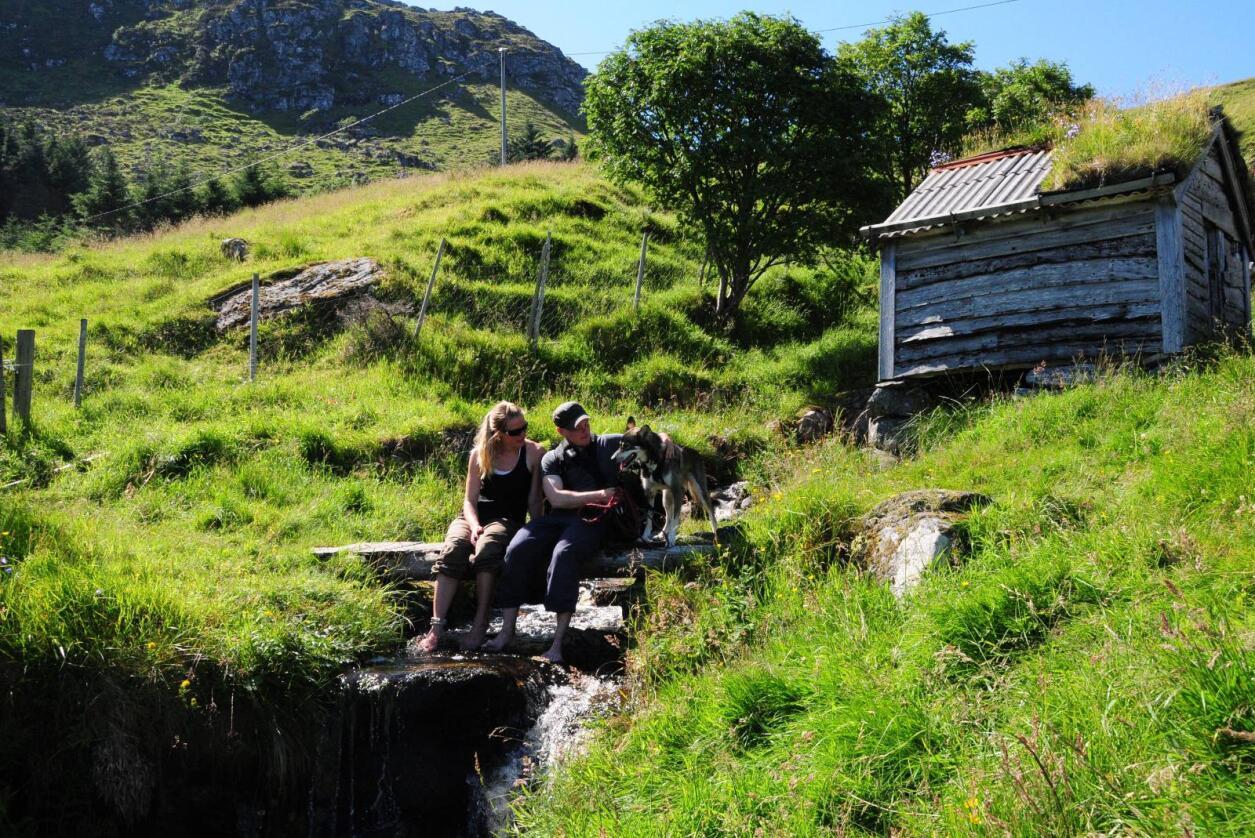Eksotiske Norge: Mange av medlemsbedriftene i Hanen kan tilby gjestene sine eksotiske opplevelser. Foto: Ole Jonny Trangsrud