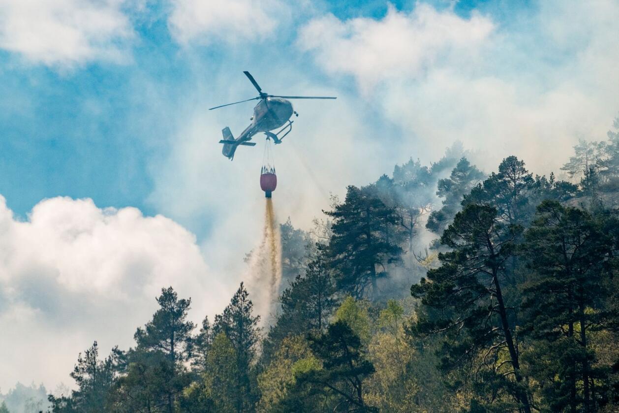 I 2020 brant det i et større terreng i Søgne i Kristiansand. Foto: Tor Erik Schrøder/NTB