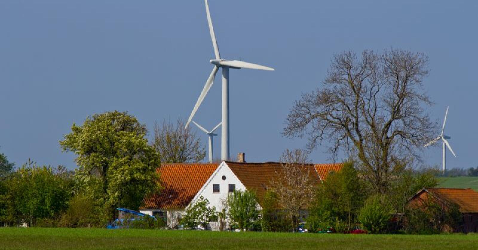 Dansk landbruk må få større økonomisk drahjelp for å gjennomføre grønn omstilling og nå visjonen om klimanøytralitet i 2050, påpeker Landbug & Fødevarer – Danmarks svar på Norges Bondelag. Foto: Henrik Sørensen/Colourbox